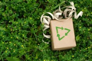 Pacchetto regalo ecologico